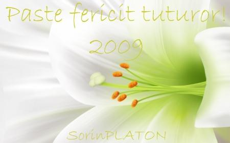 felicitare-de-pasti-2009