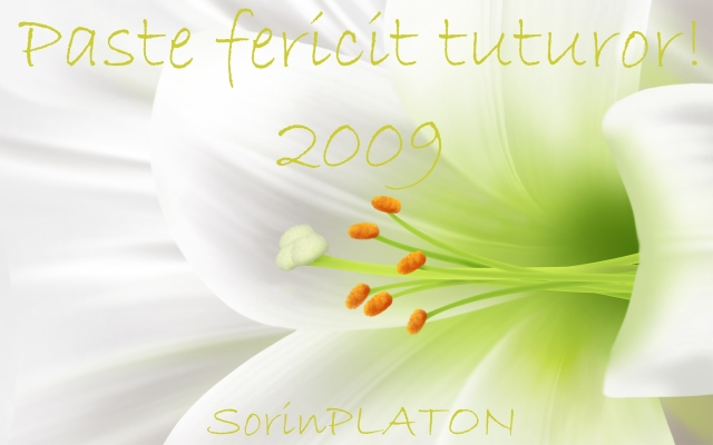 felicitare-de-pasti-20091