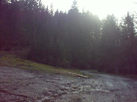 stana-de-vale-lesul-ursului-valul-miresei-32-m