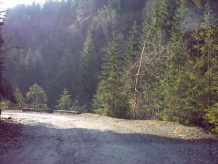 stana-de-vale-lesul-ursului-valul-miresei-34-m1