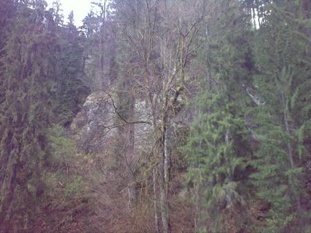 stana-de-vale-lesul-ursului-valul-miresei-38-m
