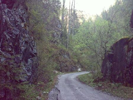 stana-de-vale-lesul-ursului-valul-miresei-48-m