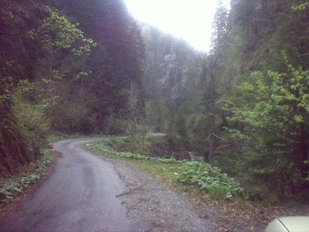 stana-de-vale-lesul-ursului-valul-miresei-50-m