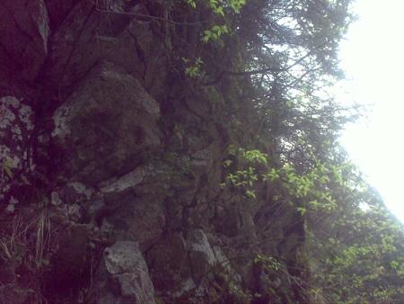 stana-de-vale-lesul-ursului-valul-miresei-52-m