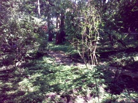 Gradina Botanica Cluj PLATON 17