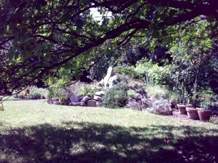 Gradina Botanica Cluj PLATON 21