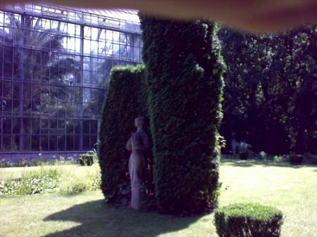 Gradina Botanica Cluj PLATON 22
