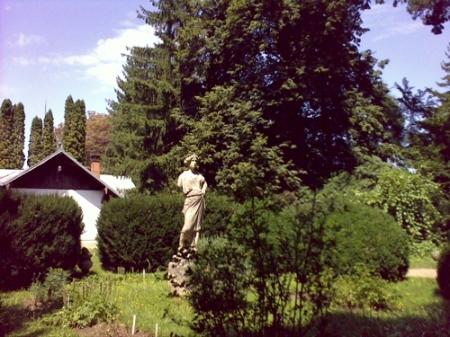 Gradina Botanica Cluj PLATON 47