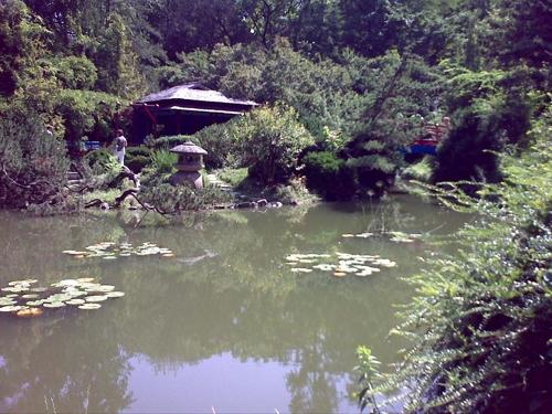 Gradina Botanica Cluj PLATON 5