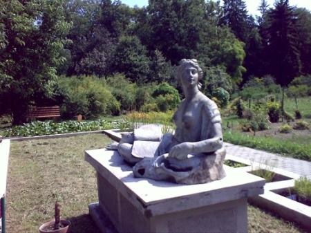 Gradina Botanica Cluj PLATON 50