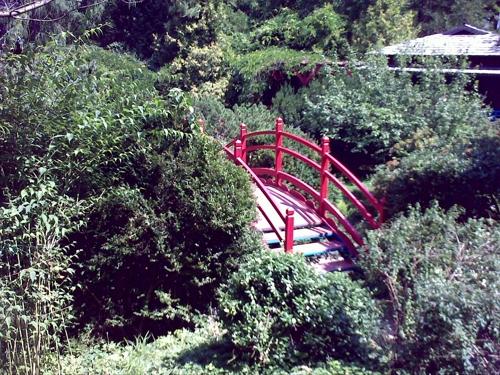 Gradina Botanica Cluj PLATON 7