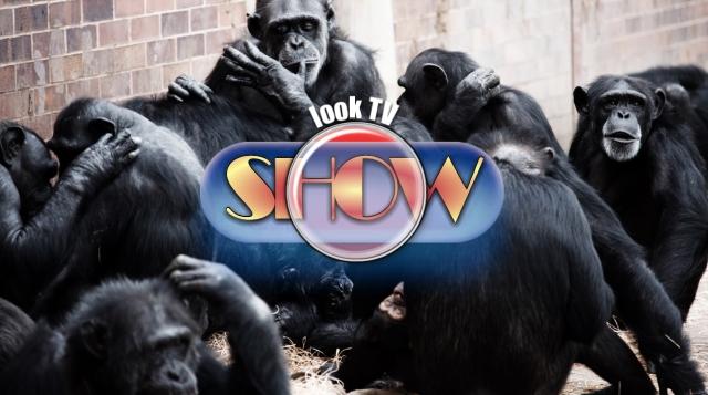 look-TV-show