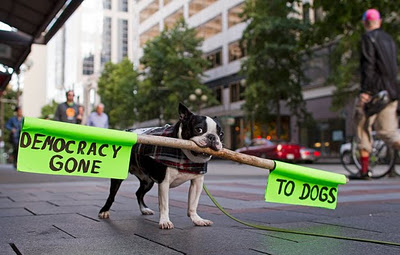 democracy-gone-to-dogs